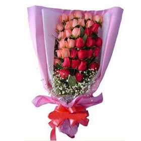 Pink red roses bouquet