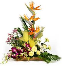 Roses orchids and bird of paradise basket