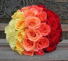 24 ombre roses basket