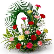 50 carnations basket