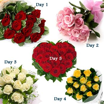 Day-1 12 yellow roses Day-2 12 pink roses Day-3 12 white Roses Day-4 12 yellow roses Day-5 24 Red roses heart