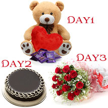 Day-1 Teddy 6 inch Day-2 1/2 kg chocolate cake Day-3 12 Red roses